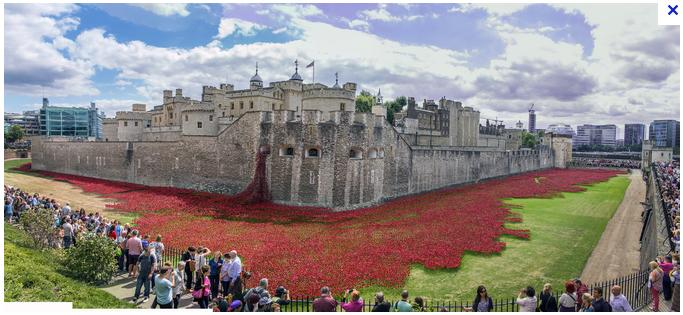 poppies tower london coquelicots tour londres